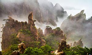 霧氣蒙蒙的黃山景觀攝影圖片