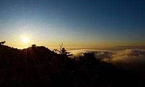 早晨美麗的黃山日出攝影圖片