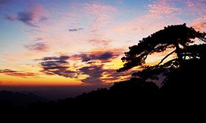 黃山迎客松黃昏美景攝影圖片