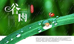 谷雨传统节气宣传海报PSD素材
