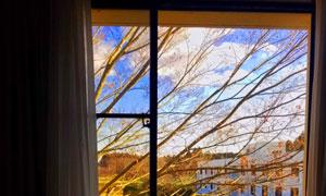 窗外藍天白云與凋零的樹枝高清圖片