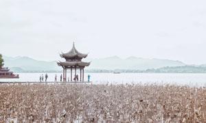 雪中的湖景远山与亭子摄影高清图片