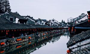 挂着红灯笼的枫泾古镇风光摄影图片