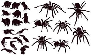 黑白效果的大熊鹦鹉与蜘蛛矢量素材