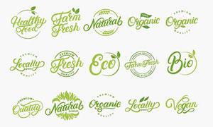 绿叶元素与文字等环保标签矢量素材