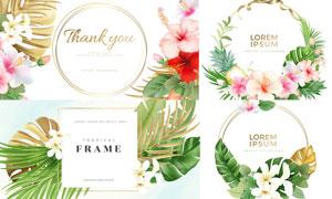 鲜花与热带植物装饰的边框矢量素材