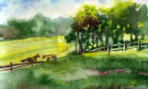 樹林與牧場的馬匹水彩繪畫高清圖片