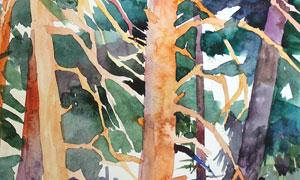 山間茂密的樹林水彩畫設計高清圖片