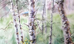 小屋與白樺樹風景水彩繪畫高清圖片