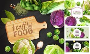 白菜花菜与甘蓝等蔬菜主题矢量素材