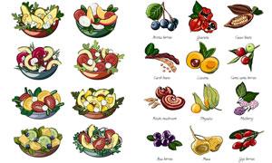 蔬菜水果与做好的沙拉主题矢量素材