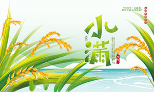 绿色主题小满节气宣传展板PSD素材