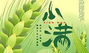 绿色麦穗主题小满节气海报PSD素材