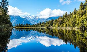 雪山下的湖泊和森林美景摄影图片
