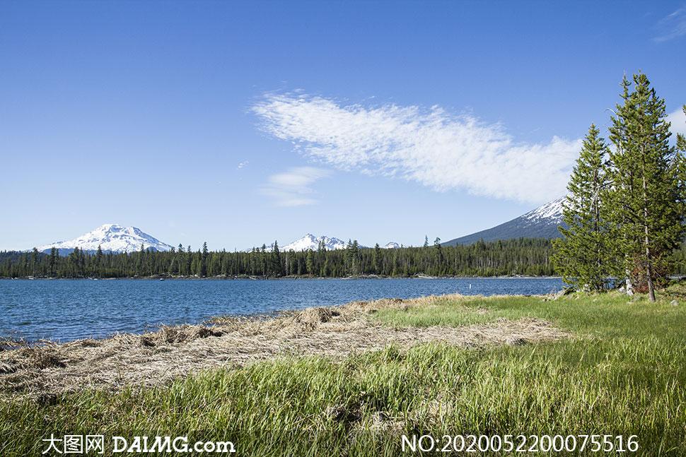 蓝天下的湖泊和森林美景摄影图片