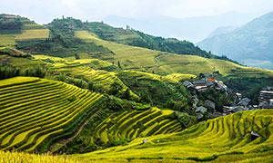 大山中的山村和梯田摄影图片
