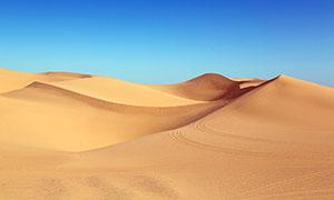 蓝天下的沙漠和沙丘高清摄影图片