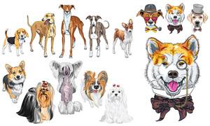 不同體型品種的寵物狗主題矢量素材