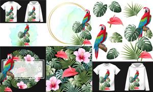 绿叶植物红花与鹦鹉等主题矢量素材