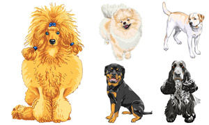 逼真效果寵物狗等主題設計矢量素材