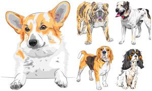 不同犬種的狗狗們主題設計矢量素材