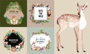 斑馬袋鼠與梅花鹿等水彩創意矢量圖