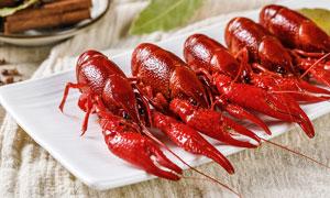 鮮紅的小龍蝦美食攝影圖片