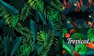 质感效果热带茂密植物主题矢量素材