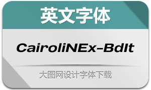 CairoliNowEx-BoldIt(英文字体)