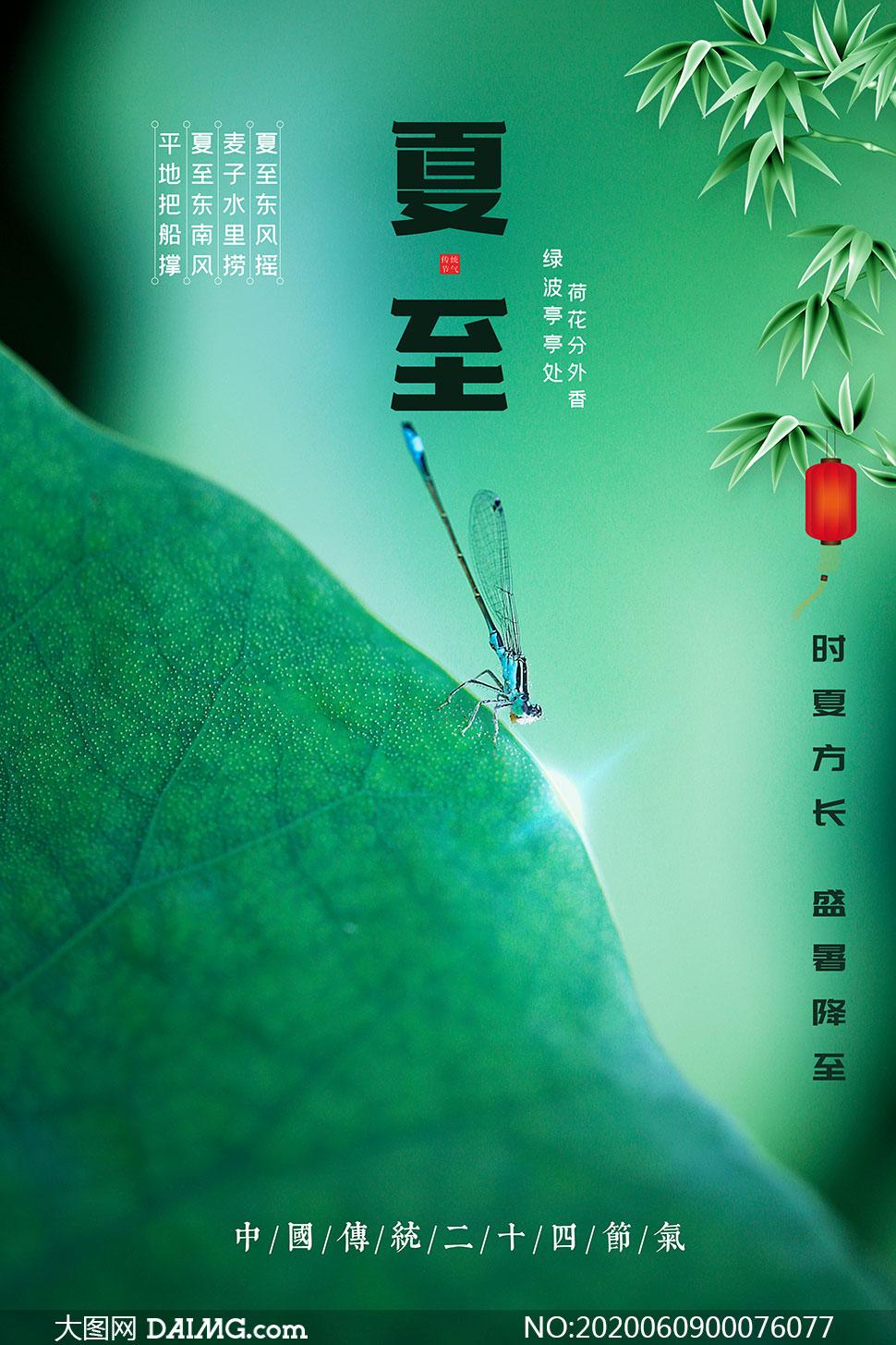中国风绿色主题夏至节气海报PSD素材