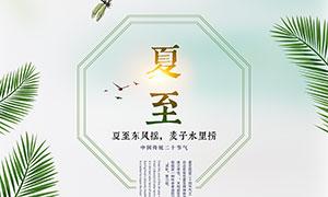 中国传统夏至节气宣传单设计PSD素材
