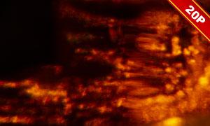 漏光效果后期合成适用高光图片素材