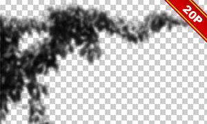虛焦模糊效果樹葉裝飾用圖片素材V01