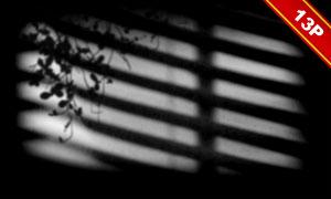窗户与植物阴影等创意合成素材集V02