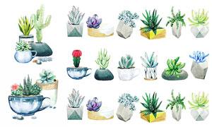 水彩风格仙人掌等植物主题矢量素材
