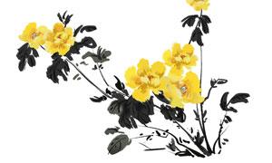 中国风水墨牡丹花设计PSD分层素材