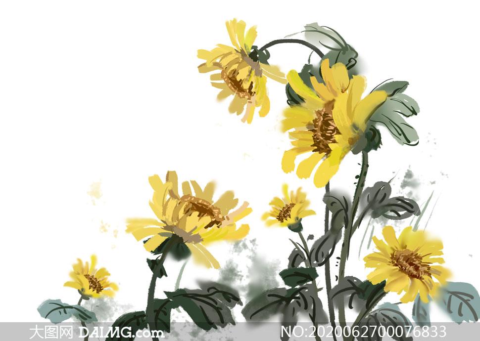 中国风向日葵国画设计PSD分层素材