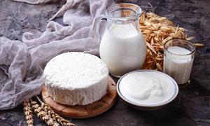 麦穗牛奶与奶油等特写摄影高清图片