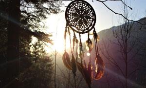 在山间树枝上的捕梦网饰品高清图片