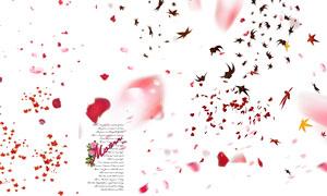 飘落的花瓣与树叶装饰元素分层素材