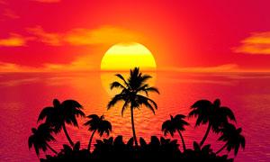 落日下的海边椰树剪影摄影图片