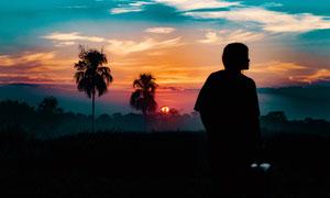 夕阳下的椰树林和人物剪影摄影图片