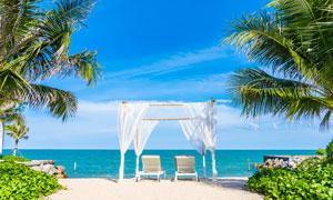 棕櫚樹躺椅與藍天白云海景高清圖片