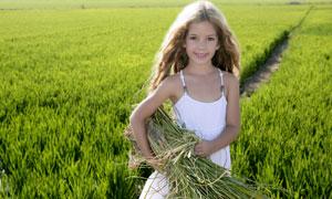站在田间的长发小女孩摄影高清图片
