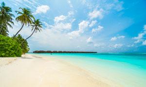 天空白云椰树海景风光摄影高清图片