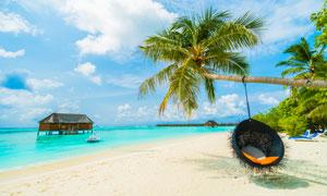 天空白云大海椰树风景摄影高清图片