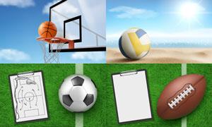 篮球排球足球与战术板主题矢量素材