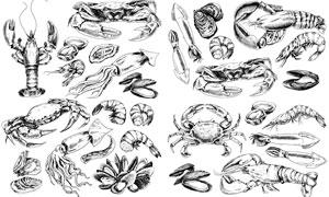 龙虾与鱿鱼等素描海产品主题矢量图