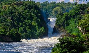 河水与郁郁葱葱的树林摄影高清图片