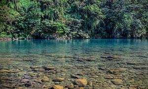 清澈可见水底小石头的湖泊高清图片